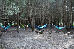 Hammock City
